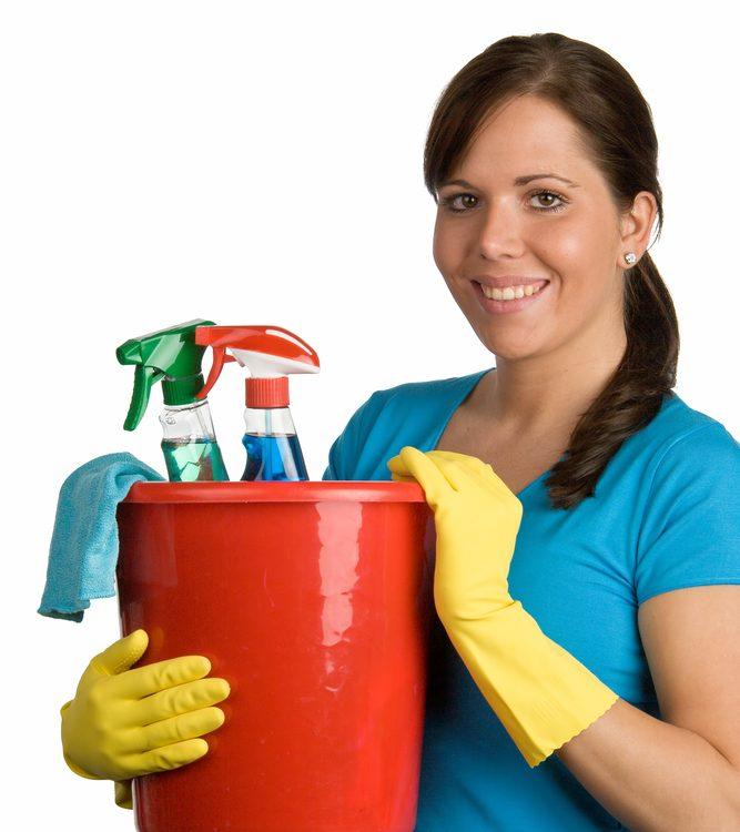 pro house cleaning staff